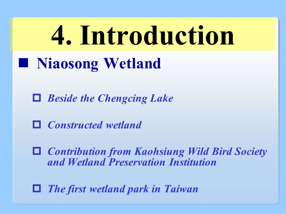 4. Introduction Niaosong Wetland  Beside the Chengcing Lake  Constructed wetland  Contribution from Kaohsiung Wild Bird Society and Wetland Preserv