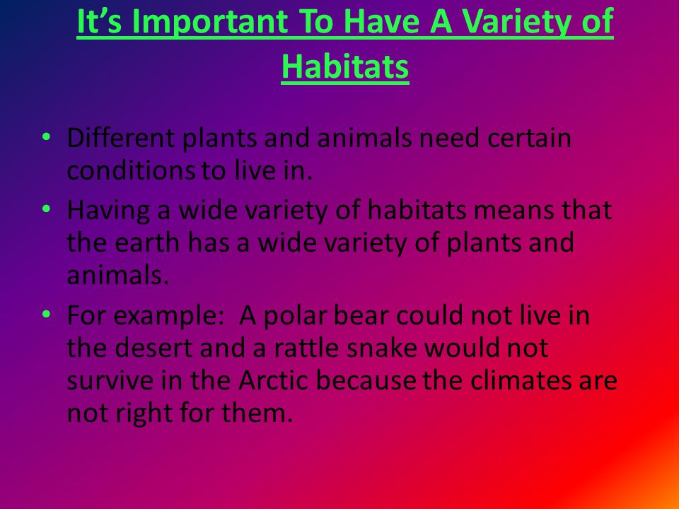 It's Important To Have A Variety of Habitats Different plants and animals need certain conditions to live in. Having a wide variety of habitats means