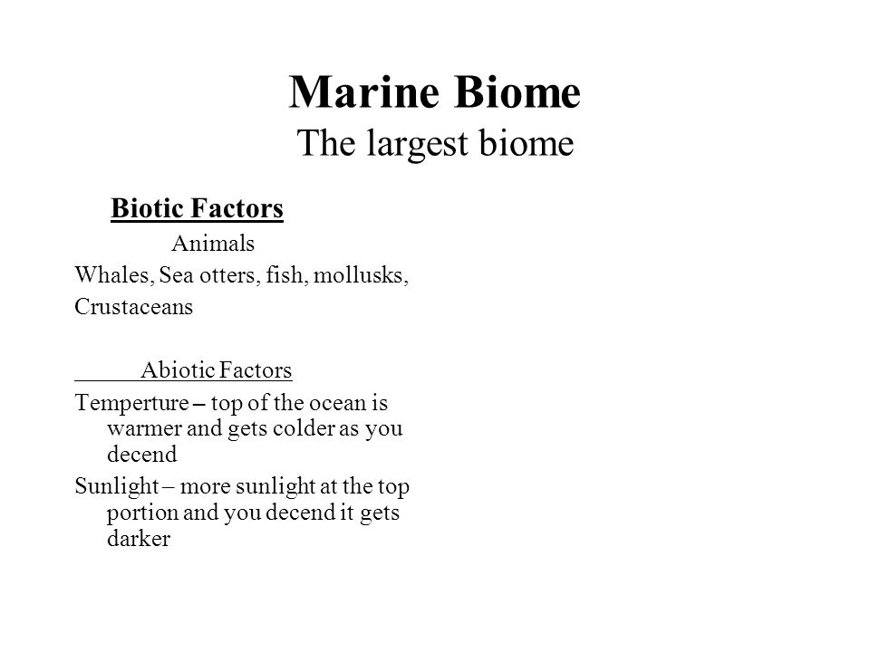 Marine Biome The largest biome Biotic Factors Animals Whales, Sea otters, fish, mollusks, Crustaceans Abiotic Factors Temperture – top of the ocean is