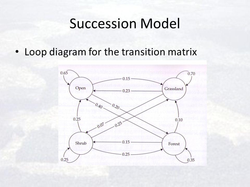 Succession Model Loop diagram for the transition matrix
