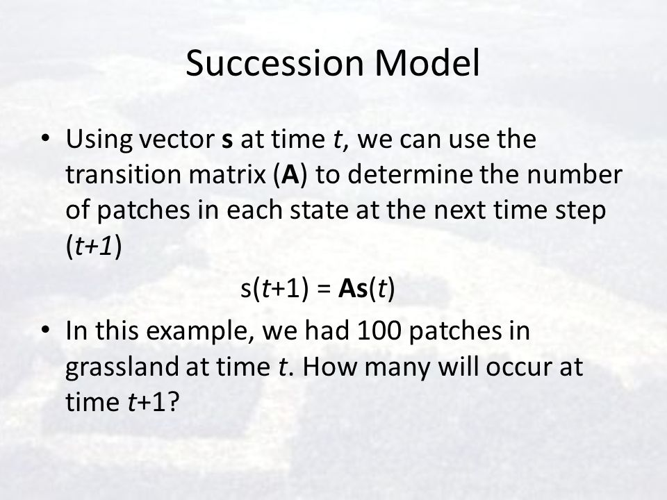 Succession Model Using vector s at time t, we can use the transition matrix (A) to determine the number of patches in each state at the next time step