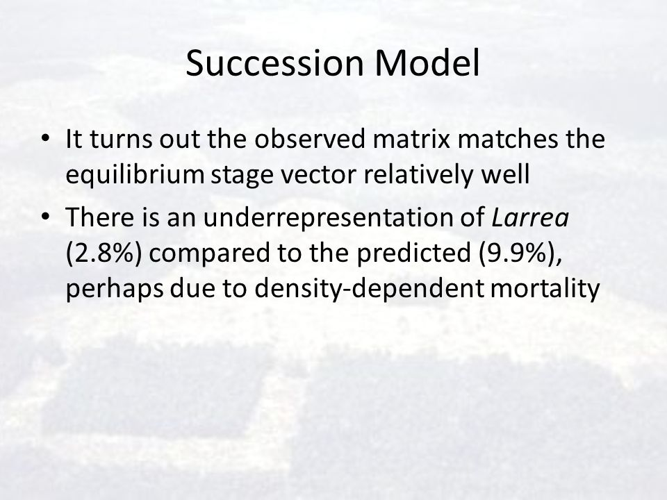 Succession Model It turns out the observed matrix matches the equilibrium stage vector relatively well There is an underrepresentation of Larrea (2.8%