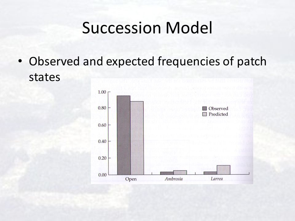 Succession Model Observed and expected frequencies of patch states