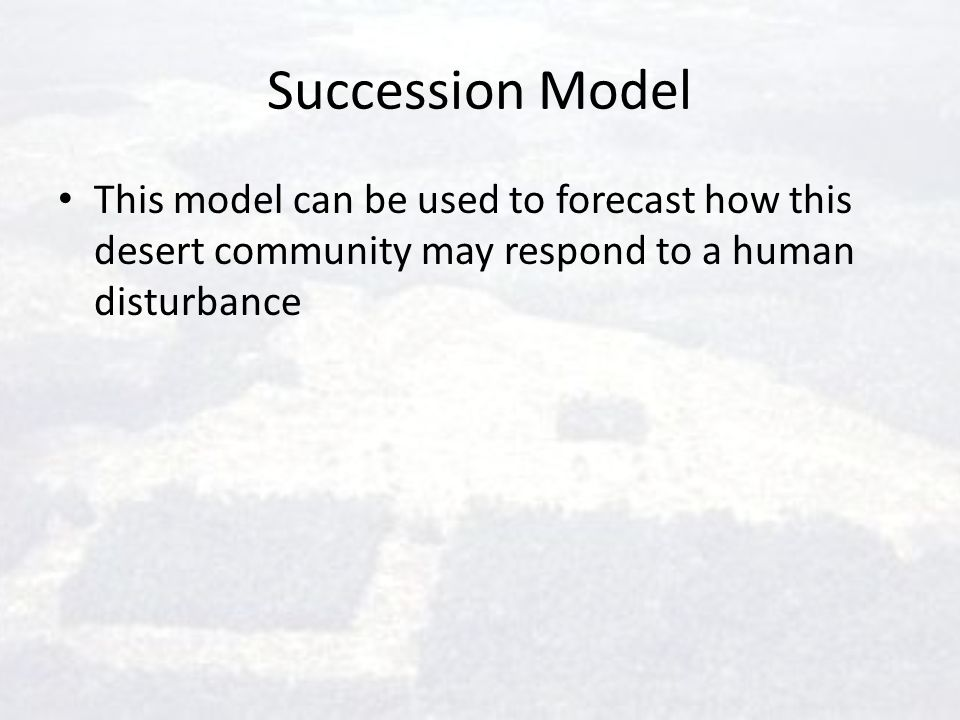 Succession Model This model can be used to forecast how this desert community may respond to a human disturbance