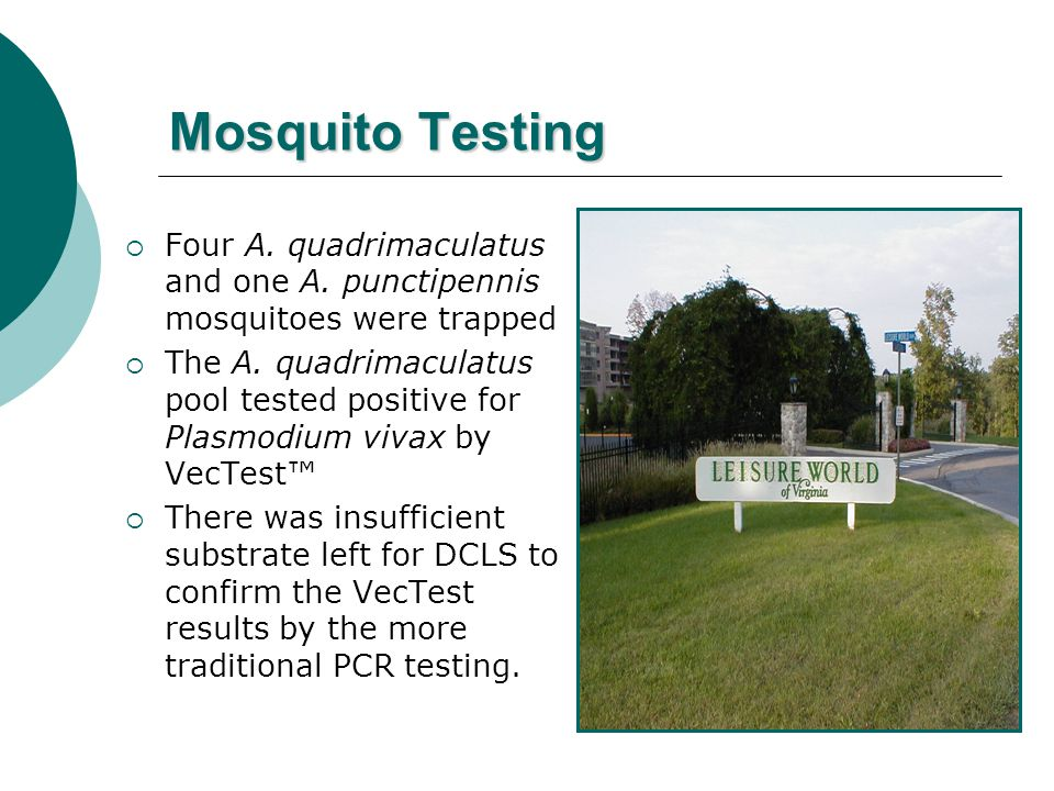 Mosquito Testing  Four A. quadrimaculatus and one A. punctipennis mosquitoes were trapped  The A. quadrimaculatus pool tested positive for Plasmodiu