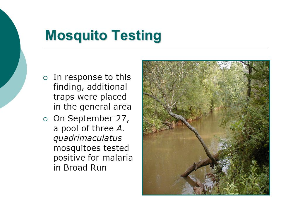 Mosquito Testing  In response to this finding, additional traps were placed in the general area  On September 27, a pool of three A.