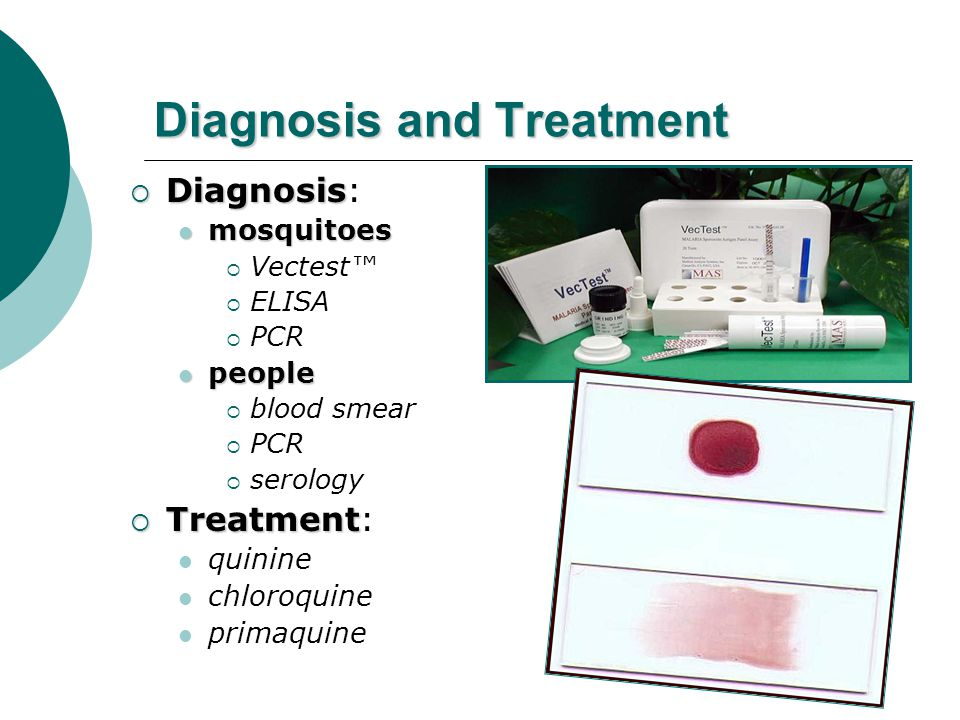 Diagnosis and Treatment  Diagnosis  Diagnosis: mosquitoes mosquitoes  Vectest™  ELISA  PCR people people  blood smear  PCR  serology  Treatment  Treatment: quinine chloroquine primaquine
