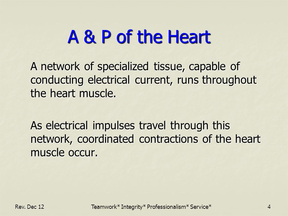 4 A & P of the Heart A network of specialized tissue, capable of conducting electrical current, runs throughout the heart muscle.