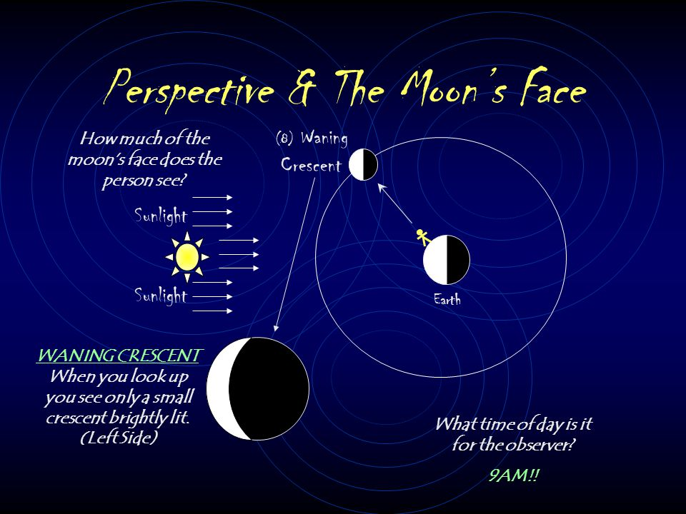 Perspective & The Moon's Face Sunlight Earth (8) Waning Crescent How much of the moon's face does the person see.