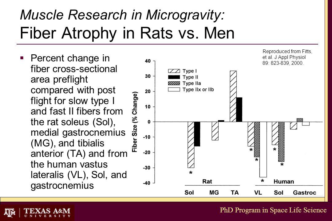PhD Program in Space Life Science Muscle Research in Microgravity: Fiber Atrophy in Rats vs. Men  Percent change in fiber cross-sectional area prefli