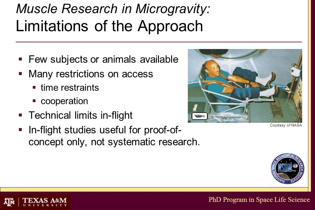 PhD Program in Space Life Science Muscle Research in Microgravity: Limitations of the Approach  Few subjects or animals available  Many restrictions on access  time restraints  cooperation  Technical limits in-flight  In-flight studies useful for proof-of- concept only, not systematic research.