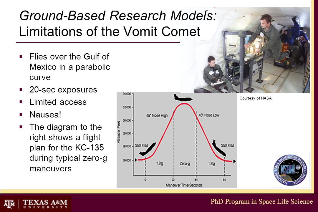 PhD Program in Space Life Science Ground-Based Research Models: Limitations of the Vomit Comet  Flies over the Gulf of Mexico in a parabolic curve  20-sec exposures  Limited access  Nausea.