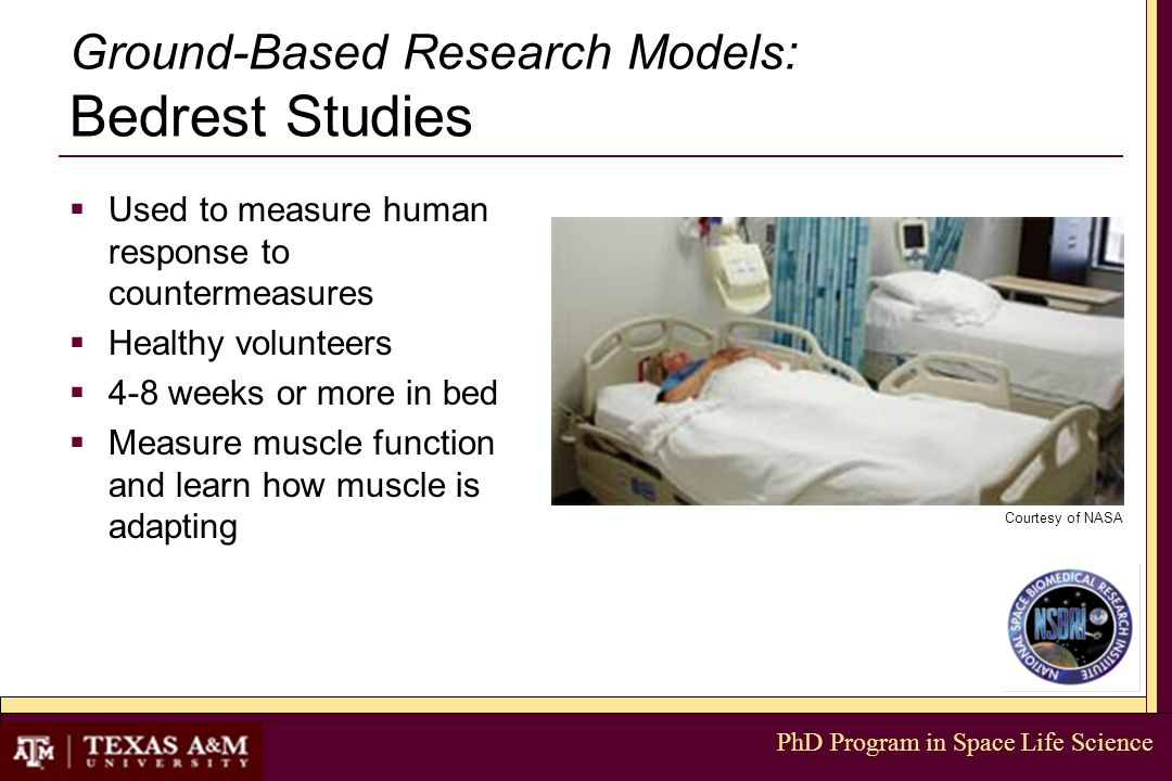 PhD Program in Space Life Science Ground-Based Research Models: Bedrest Studies  Used to measure human response to countermeasures  Healthy volunteers  4-8 weeks or more in bed  Measure muscle function and learn how muscle is adapting Courtesy of NASA
