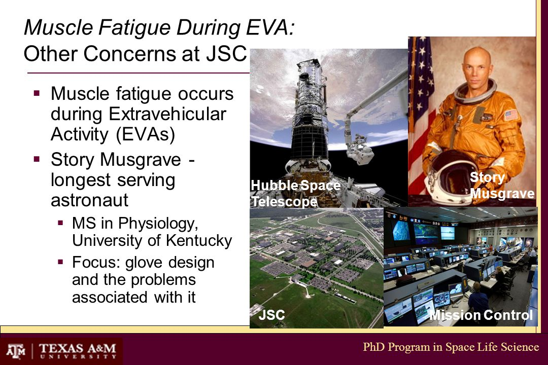 PhD Program in Space Life Science  Muscle fatigue occurs during Extravehicular Activity (EVAs)  Story Musgrave - longest serving astronaut  MS in P