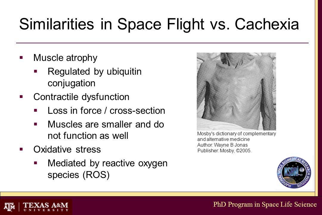 PhD Program in Space Life Science Similarities in Space Flight vs.