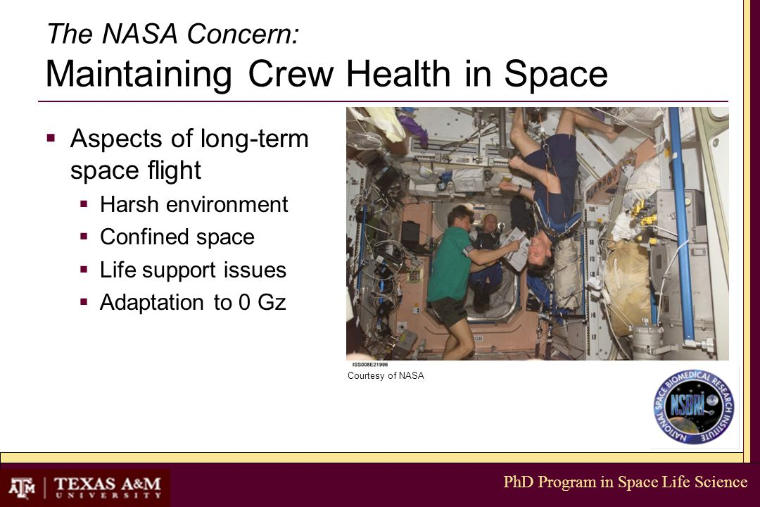 PhD Program in Space Life Science The NASA Concern: Maintaining Crew Health in Space  Aspects of long-term space flight  Harsh environment  Confined space  Life support issues  Adaptation to 0 Gz Courtesy of NASA