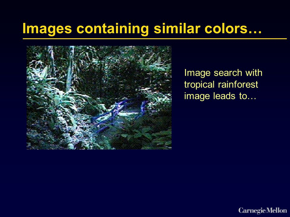 Images containing similar colors… Image search with tropical rainforest image leads to…