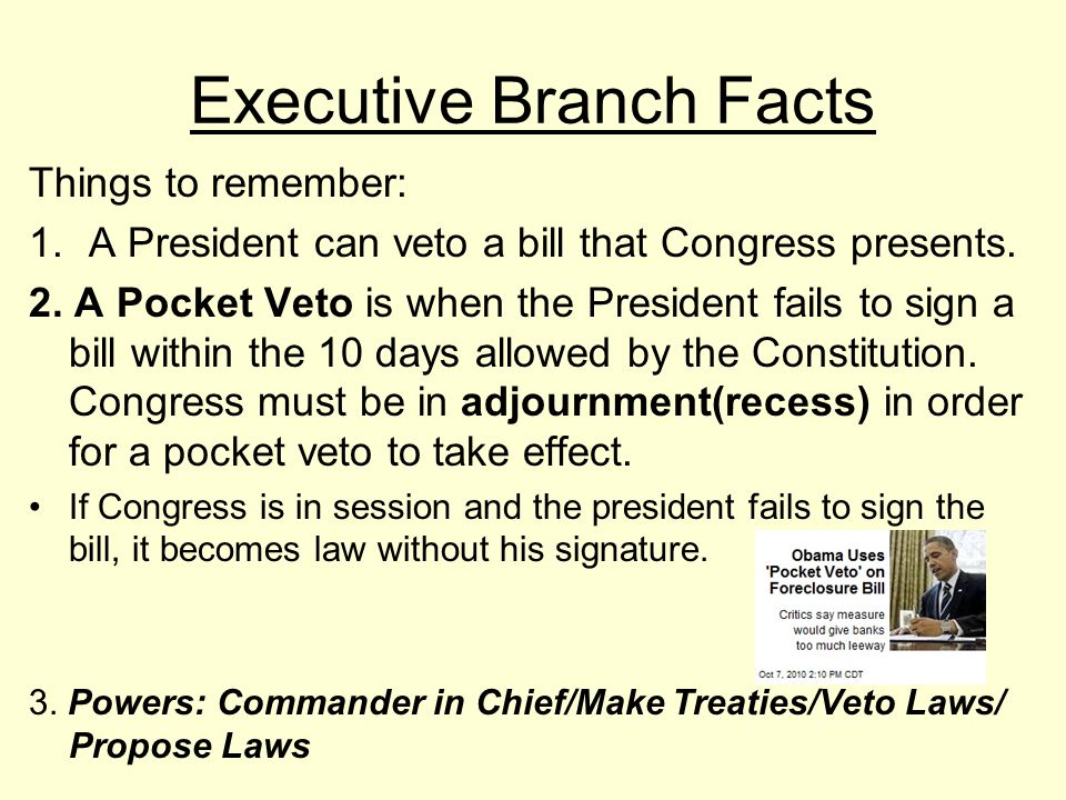 Executive Branch Facts Consists of a 15 Executive Member Cabinet President Barack Obama/Vice-President Joe Biden Vice-President job: Presiding Member of the Senate.