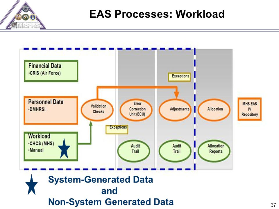 EAS Processes: Workload 37 System-Generated Data and Non-System Generated Data