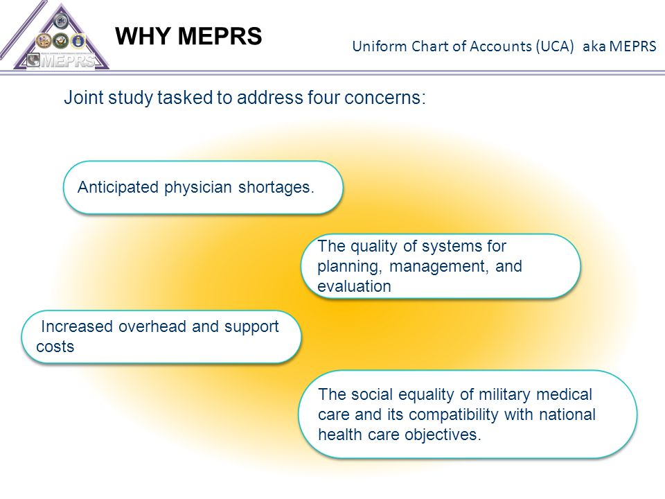 WHY MEPRS Increased overhead and support costs The quality of systems for planning, management, and evaluation Anticipated physician shortages.
