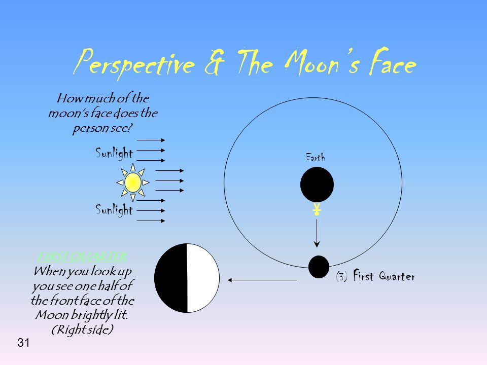 Perspective & The Moon's Face Sunlight Earth (3) First Quarter How much of the moon's face does the person see.