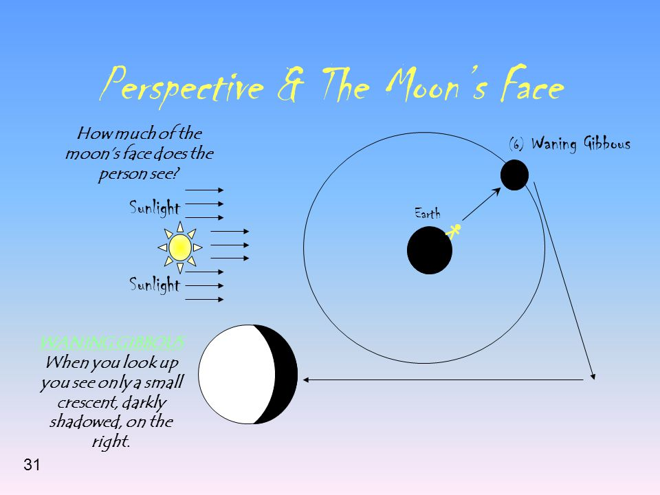 Perspective & The Moon's Face Sunlight Earth (6) Waning Gibbous How much of the moon's face does the person see? WANING GIBBOUS When you look up you s