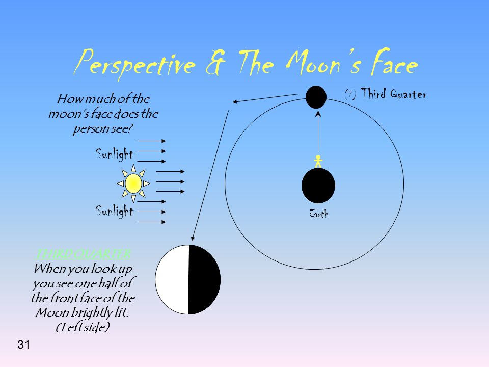 Perspective & The Moon's Face Sunlight Earth (7) Third Quarter How much of the moon's face does the person see? THIRD QUARTER When you look up you see
