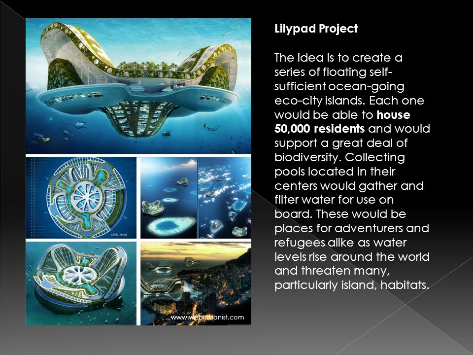Lilypad Project The idea is to create a series of floating self- sufficient ocean-going eco-city islands. Each one would be able to house 50,000 resid