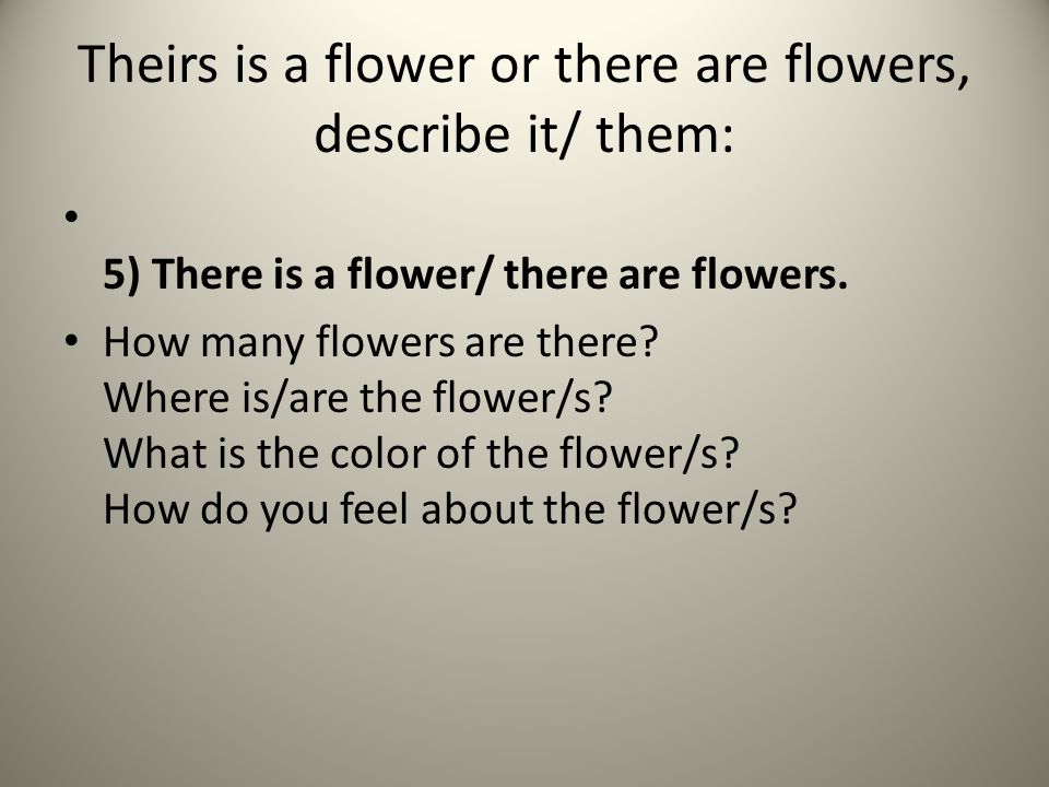 Theirs is a flower or there are flowers, describe it/ them: 5) There is a flower/ there are flowers.