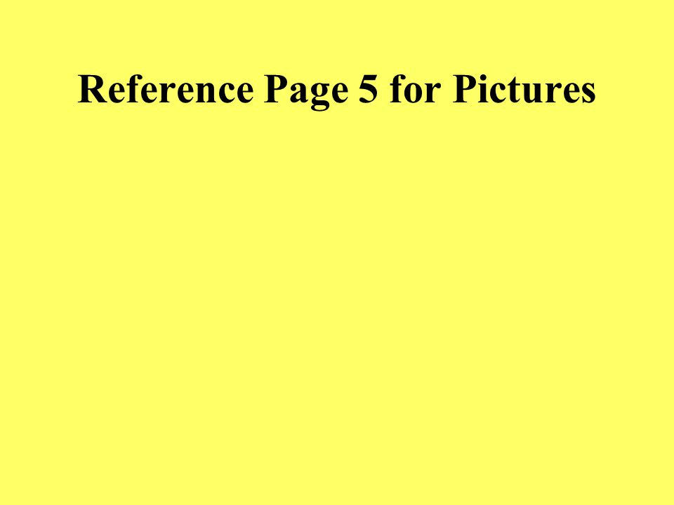 Reference Page 4 for Pictures