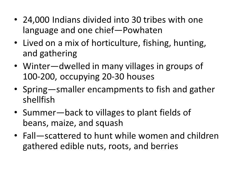 24,000 Indians divided into 30 tribes with one language and one chief—Powhaten Lived on a mix of horticulture, fishing, hunting, and gathering Winter—dwelled in many villages in groups of 100-200, occupying 20-30 houses Spring—smaller encampments to fish and gather shellfish Summer—back to villages to plant fields of beans, maize, and squash Fall—scattered to hunt while women and children gathered edible nuts, roots, and berries