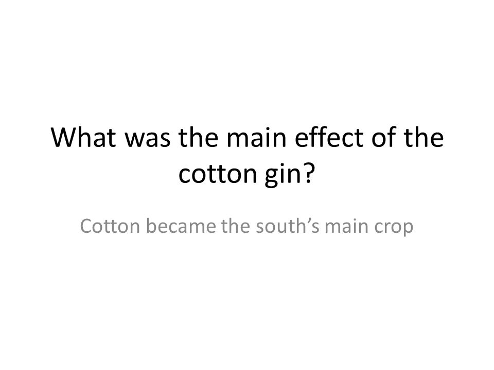 What was the main effect of the cotton gin? Cotton became the south's main crop