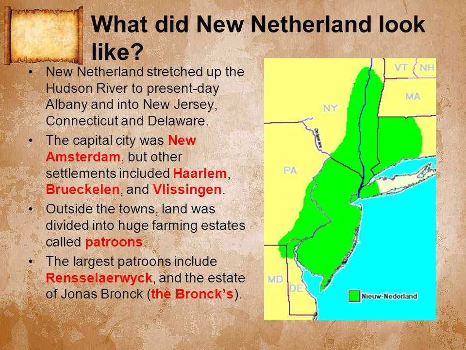 What did New Netherland look like? New Netherland stretched up the Hudson River to present-day Albany and into New Jersey, Connecticut and Delaware. T