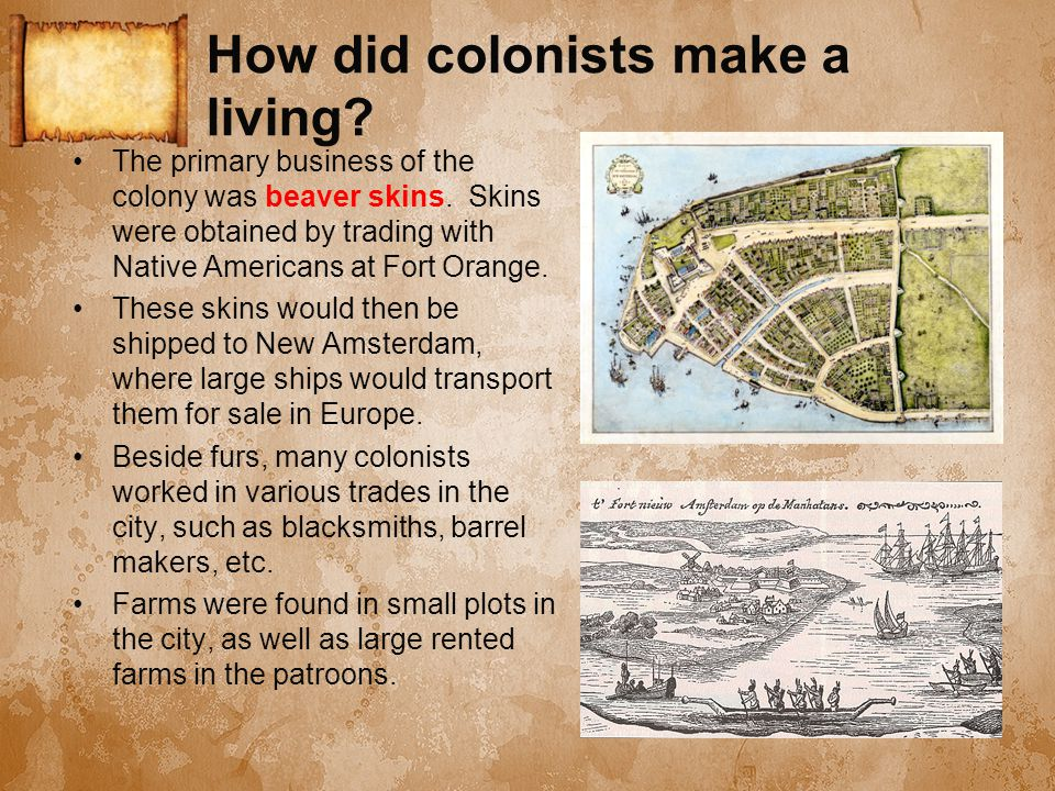 How did colonists make a living? The primary business of the colony was beaver skins. Skins were obtained by trading with Native Americans at Fort Ora
