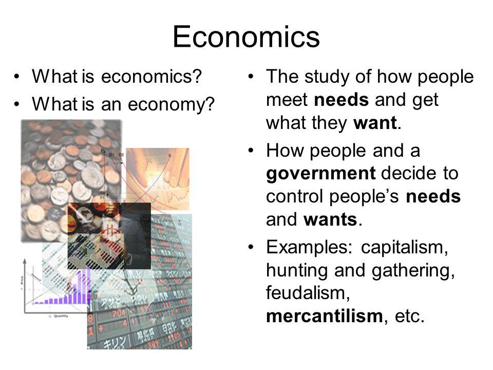 Economics What is economics.What is an economy.