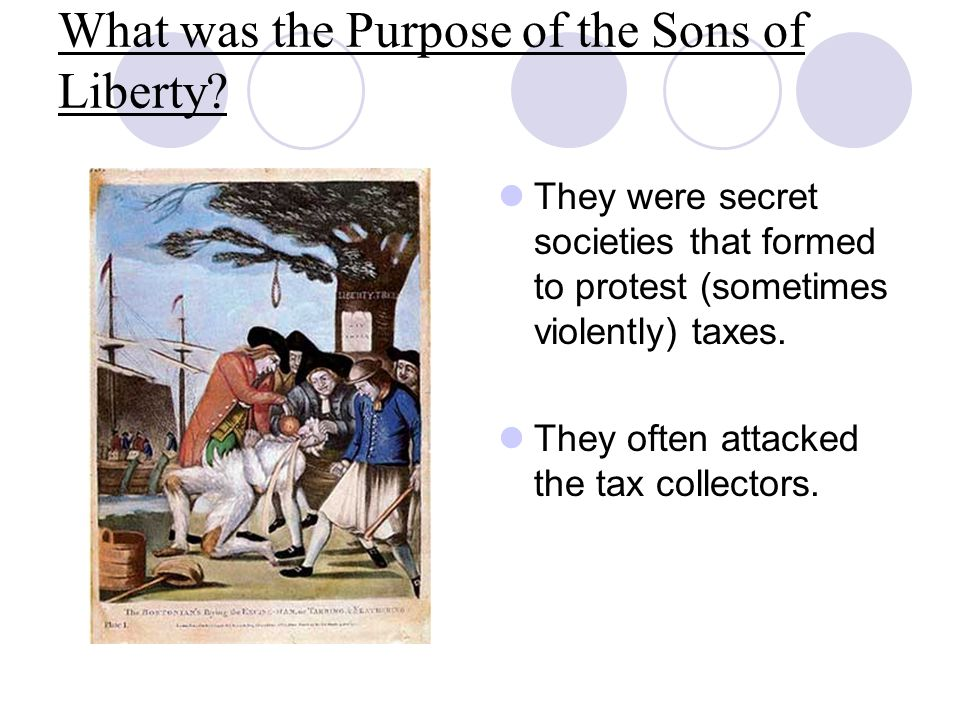 What was the Purpose of the Sons of Liberty.