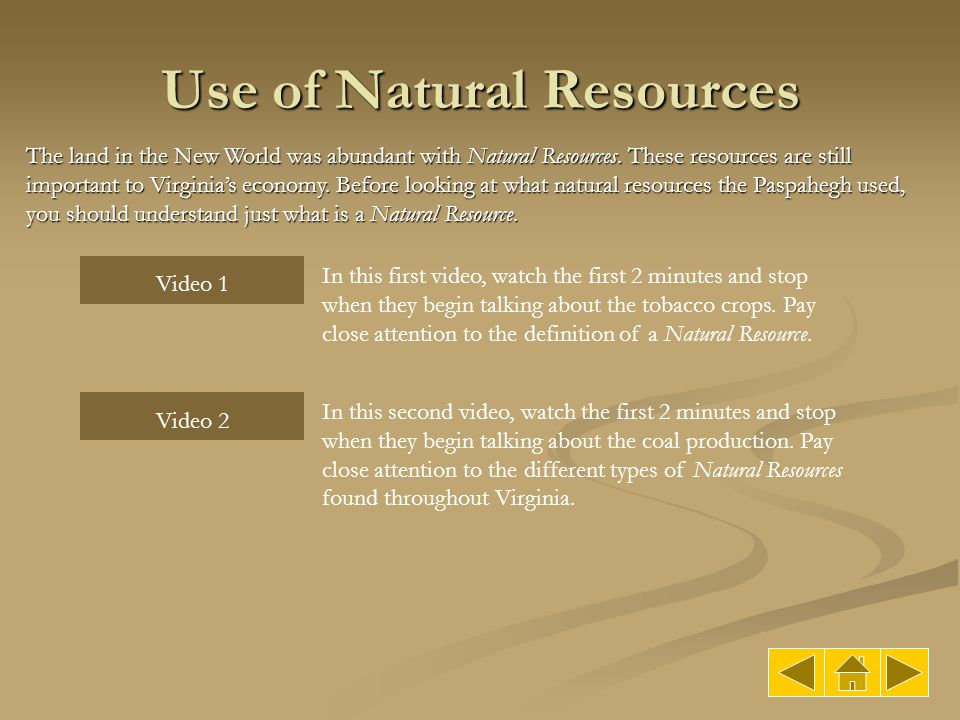 Use of Natural Resources The land in the New World was abundant with Natural Resources. These resources are still important to Virginia's economy. Bef