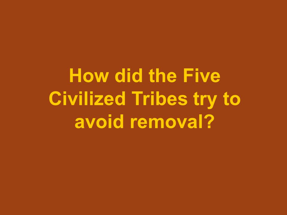 How did the Five Civilized Tribes try to avoid removal?