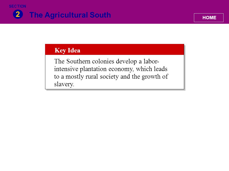 The Agricultural South 2 HOME SECTION Key Idea The Southern colonies develop a labor- intensive plantation economy, which leads to a mostly rural soci