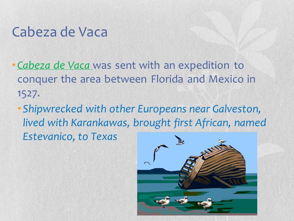 Cabeza de Vaca Cabeza de Vaca was sent with an expedition to conquer the area between Florida and Mexico in 1527. Shipwrecked with other Europeans nea
