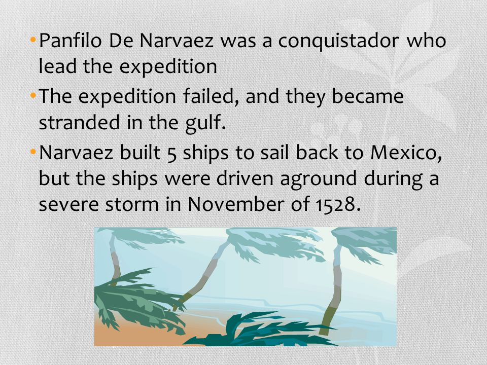 Panfilo De Narvaez was a conquistador who lead the expedition The expedition failed, and they became stranded in the gulf.