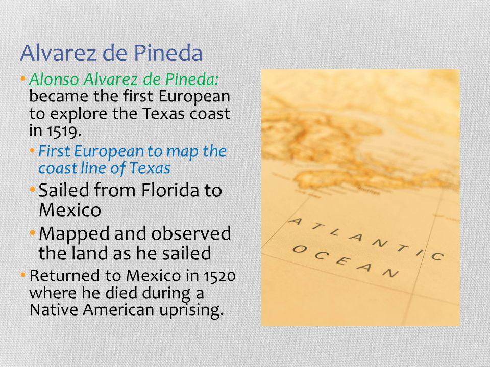 Alvarez de Pineda Alonso Alvarez de Pineda: became the first European to explore the Texas coast in 1519. First European to map the coast line of Texa