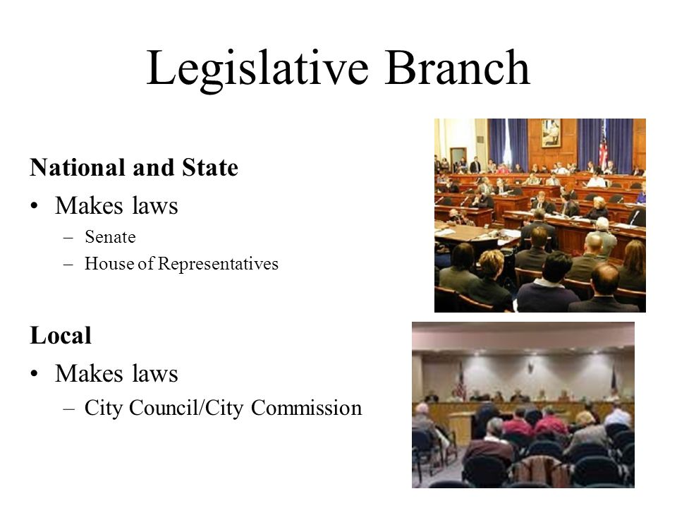 Legislative Branch National and State Makes laws –Senate –House of Representatives Local Makes laws –City Council/City Commission