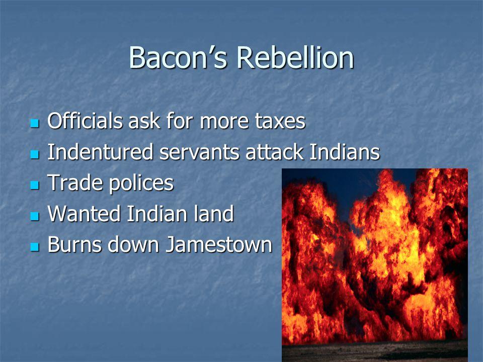 Bacon's Rebellion Officials ask for more taxes Officials ask for more taxes Indentured servants attack Indians Indentured servants attack Indians Trad