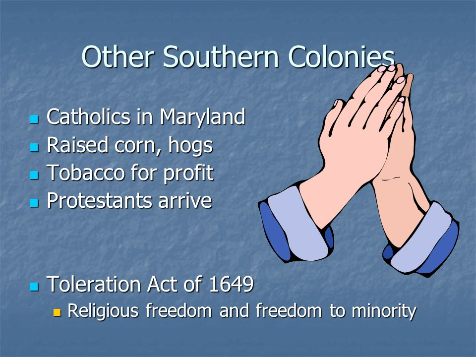 Other Southern Colonies Catholics in Maryland Catholics in Maryland Raised corn, hogs Raised corn, hogs Tobacco for profit Tobacco for profit Protesta