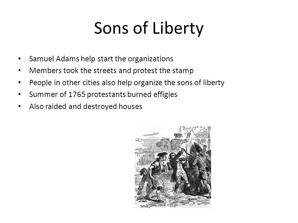 Sons of Liberty Samuel Adams help start the organizations Members took the streets and protest the stamp People in other cities also help organize the sons of liberty Summer of 1765 protestants burned effigies Also raided and destroyed houses