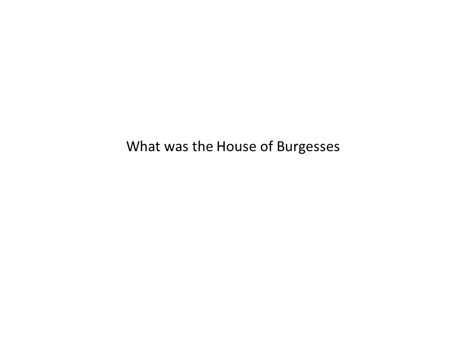 What was the House of Burgesses