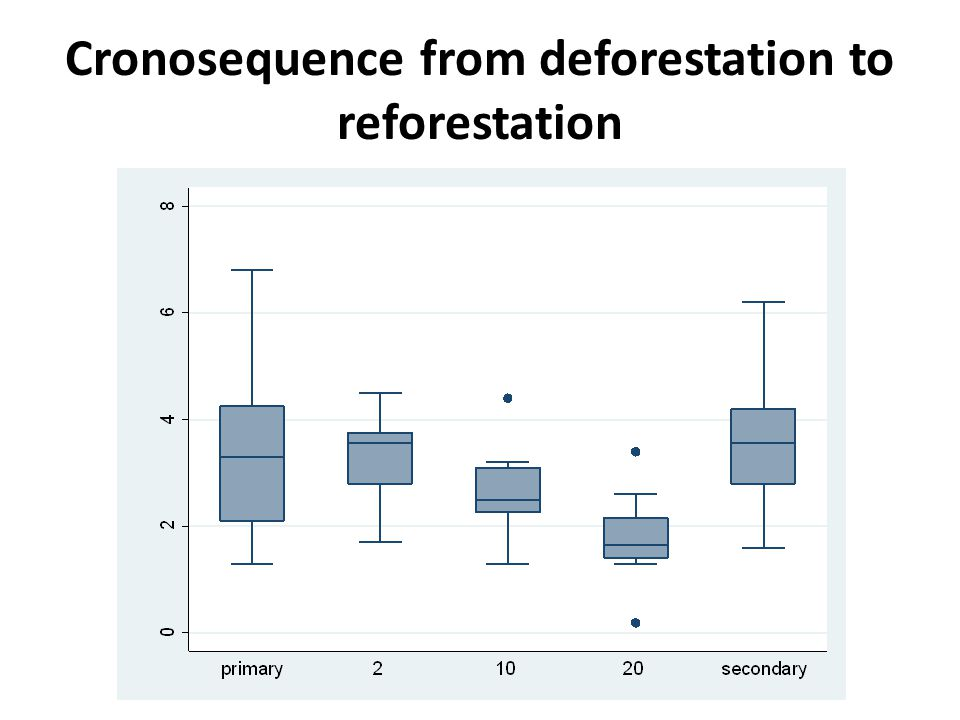 Cronosequence from deforestation to reforestation