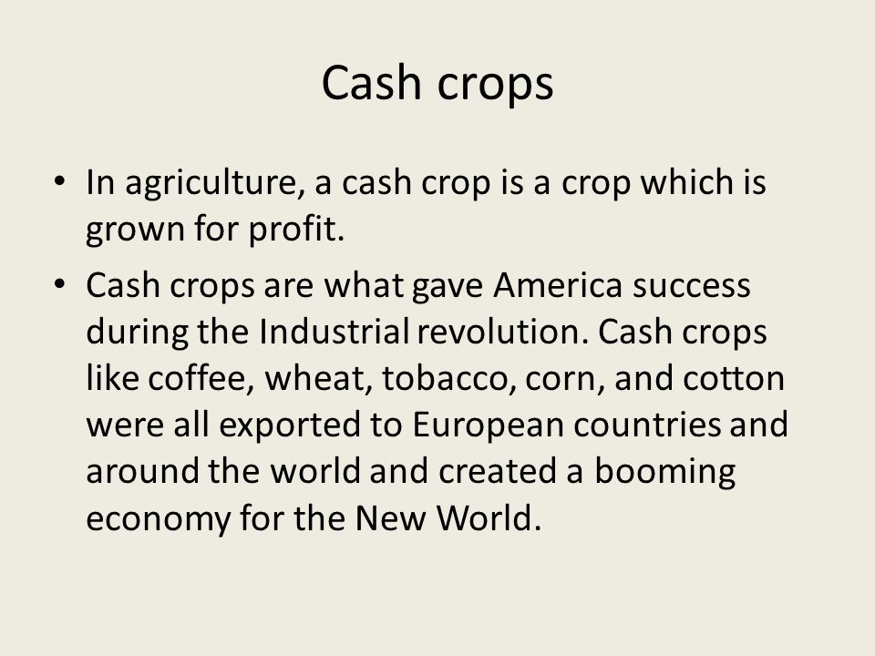 Cash crops In agriculture, a cash crop is a crop which is grown for profit. Cash crops are what gave America success during the Industrial revolution.