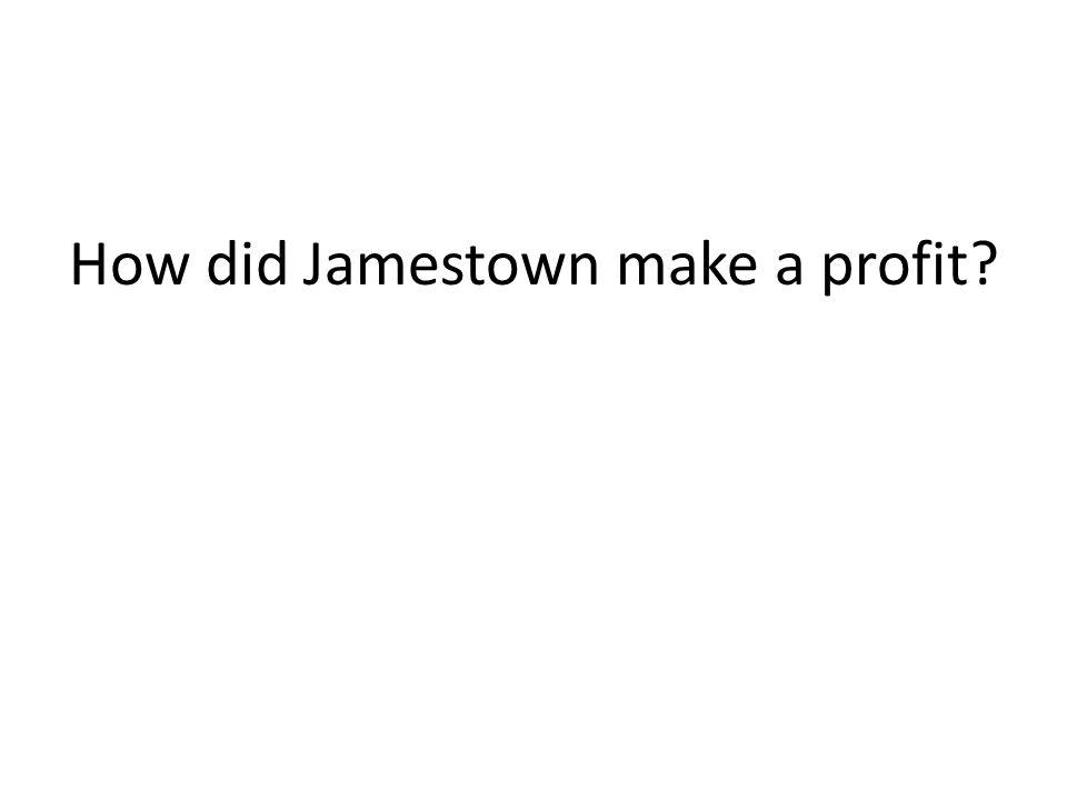 How did Jamestown make a profit?